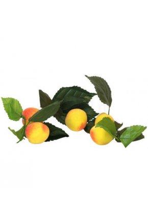 Искусственный абрикос муляж