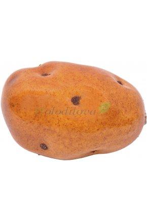 Искусственный картофель муляж