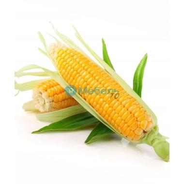 Искусственная кукуруза муляж