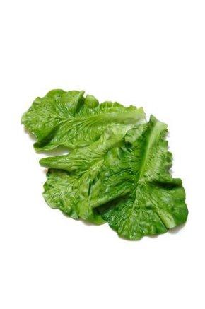 Искусственный лист салата муляж