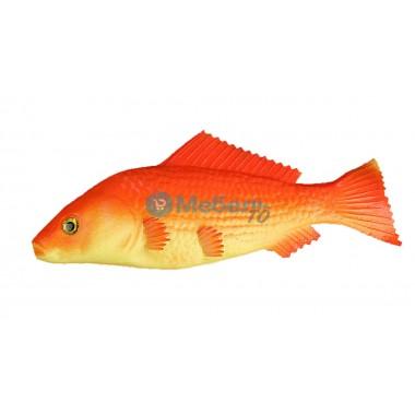 Муляж оранжевой рыбы барбус