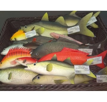 Муляжи рыбы