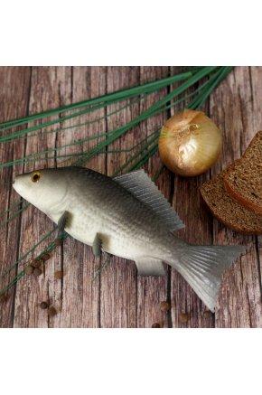 Муляж рыбы Карась